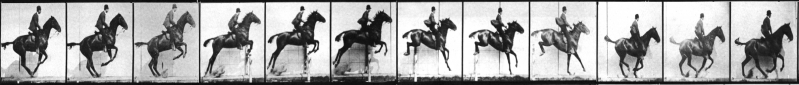 Muybridge-horse-frieze.png