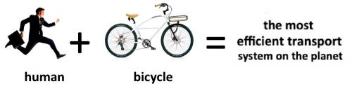 Bicycle Synergies