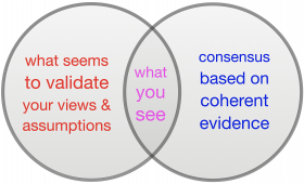 Confirmation Bias Venn